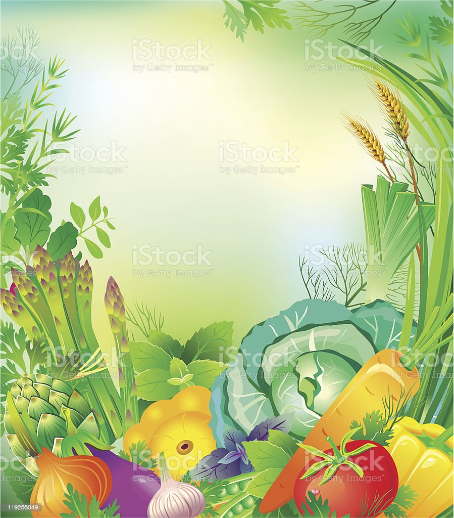 Frame of vegetables and herbs royalty-free stock vector art