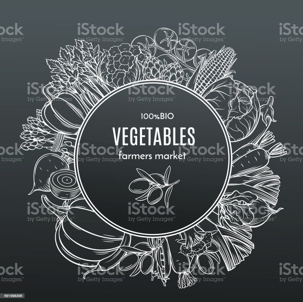 frame with hand drawn vegetables vector art illustration