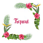 Frame with tropical leaves and flowers. Palms branches, bird of