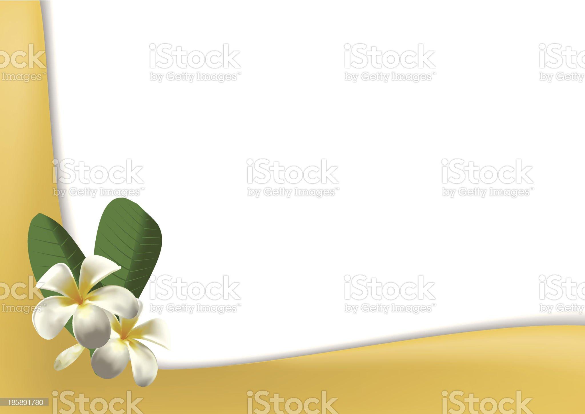 Frangipani royalty-free stock vector art