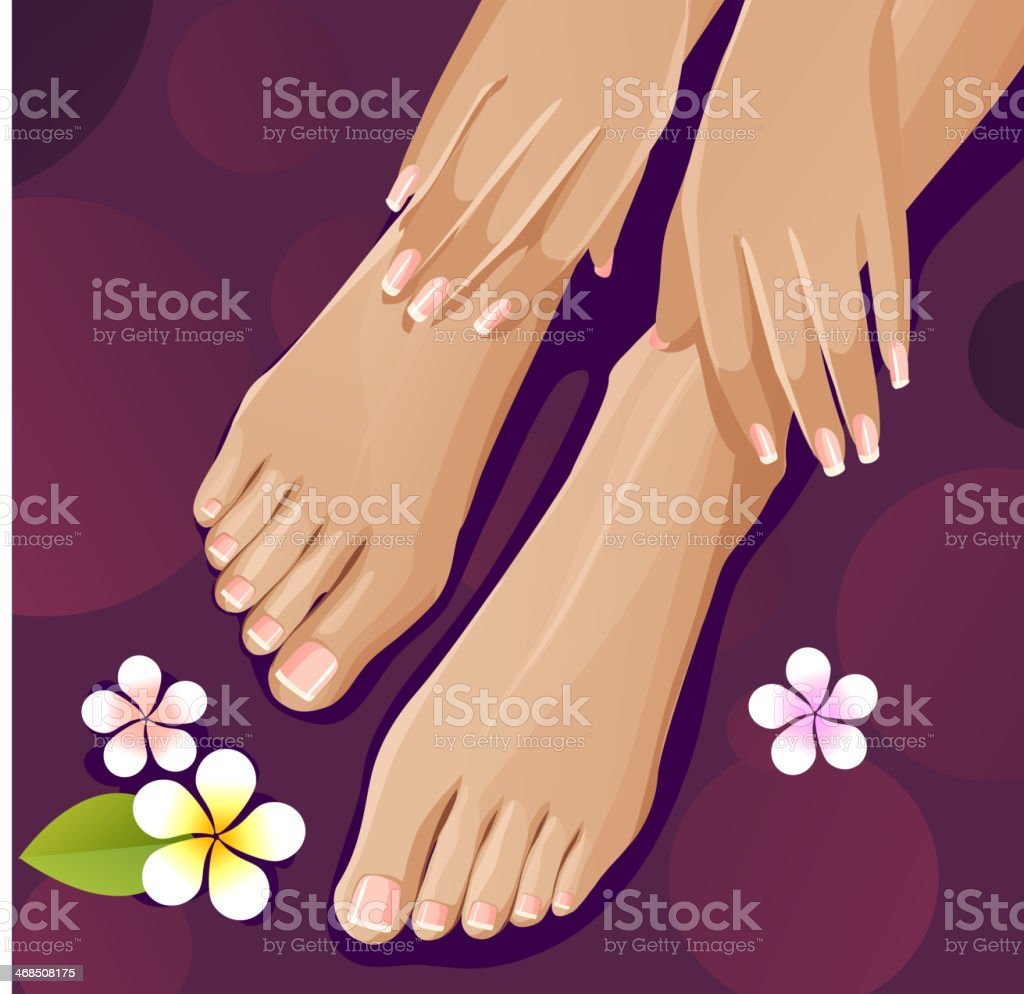 French manicure and pedicure vector art illustration