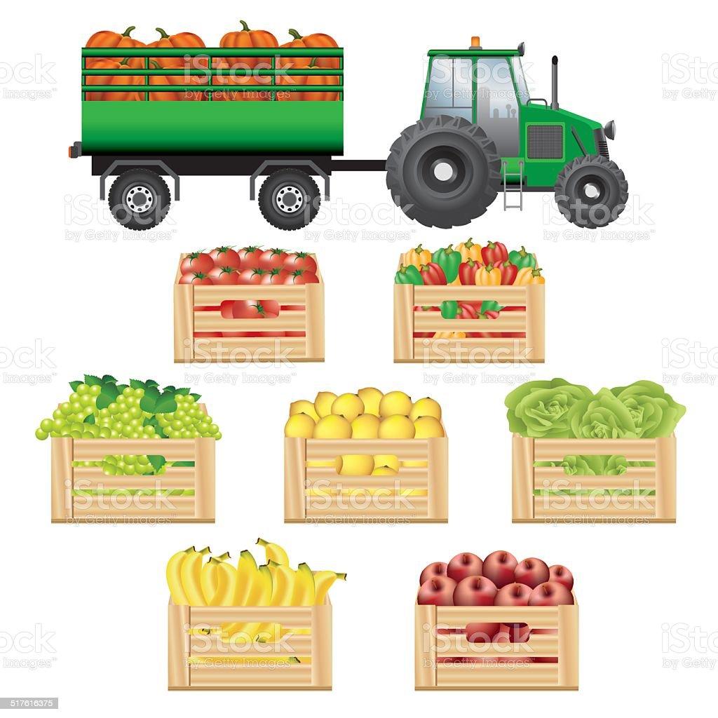 Fresh agricultural products transportation vector art illustration