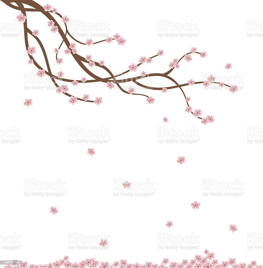 Fresh Air Cherry Branch vector art illustration