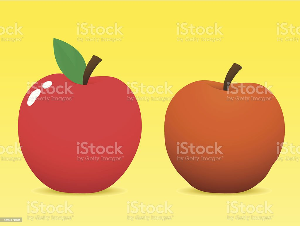 Fresh and old apple vector art illustration