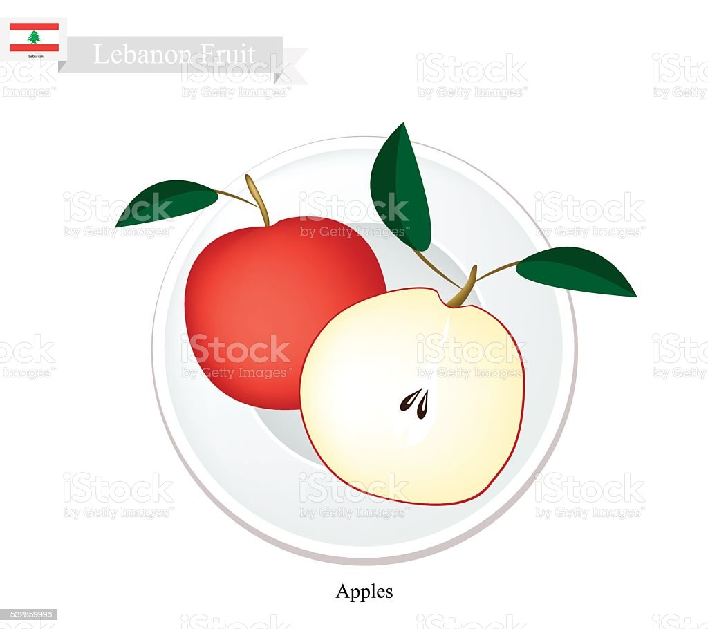 Fresh Apple, A Popular Fruit in Lebanon vector art illustration