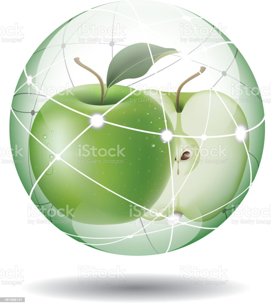 Fresh apple vector art illustration