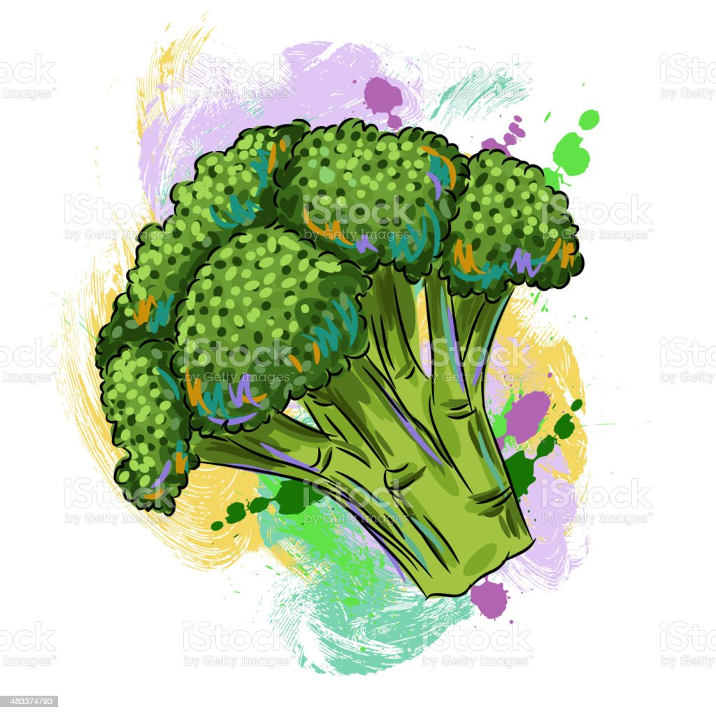 Fresh Broccoli royalty-free stock vector art