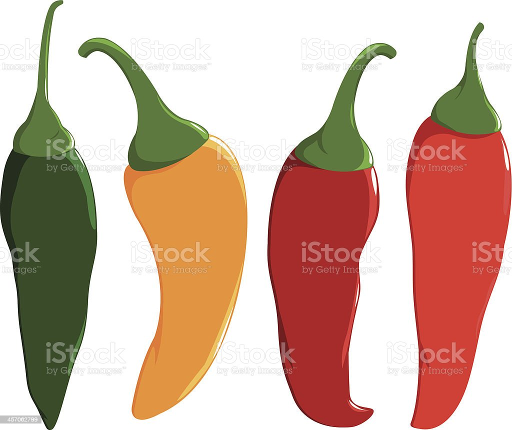 Fresh colorful hot chili peppers vector art illustration