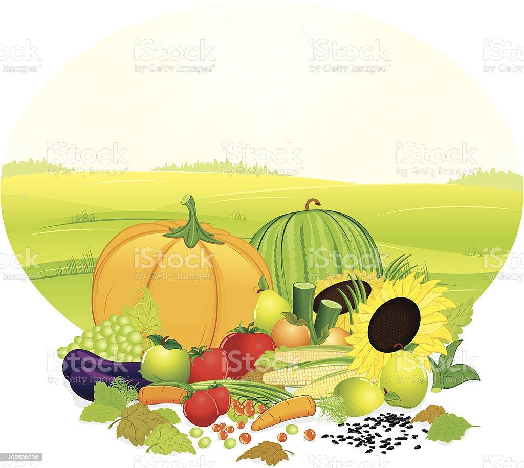 Fresh Crop royalty-free stock vector art