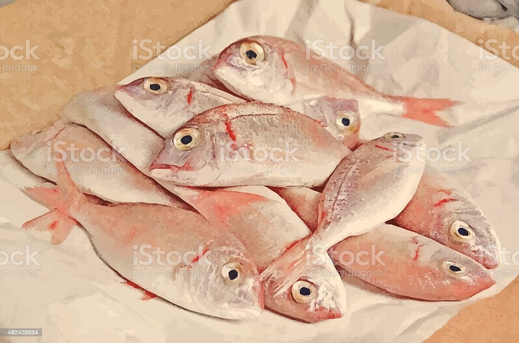 Fresh fish  with red scales vector art illustration