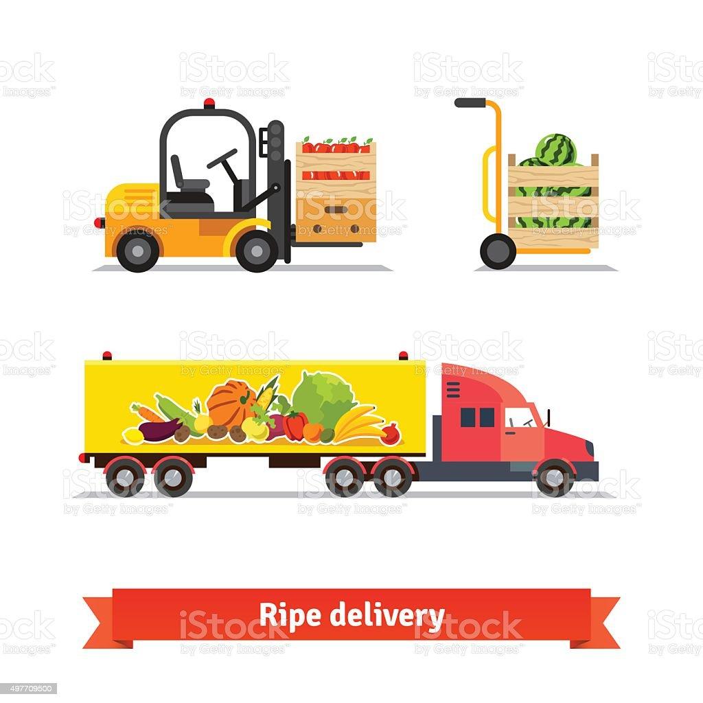 Fresh fruit and vegetables delivery vector art illustration