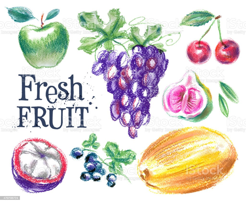fresh fruit vector logo design template. ripe food or harvest vector art illustration