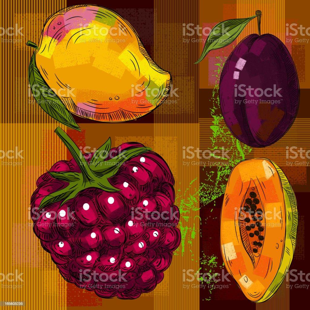 Fresh Fruits vector art illustration