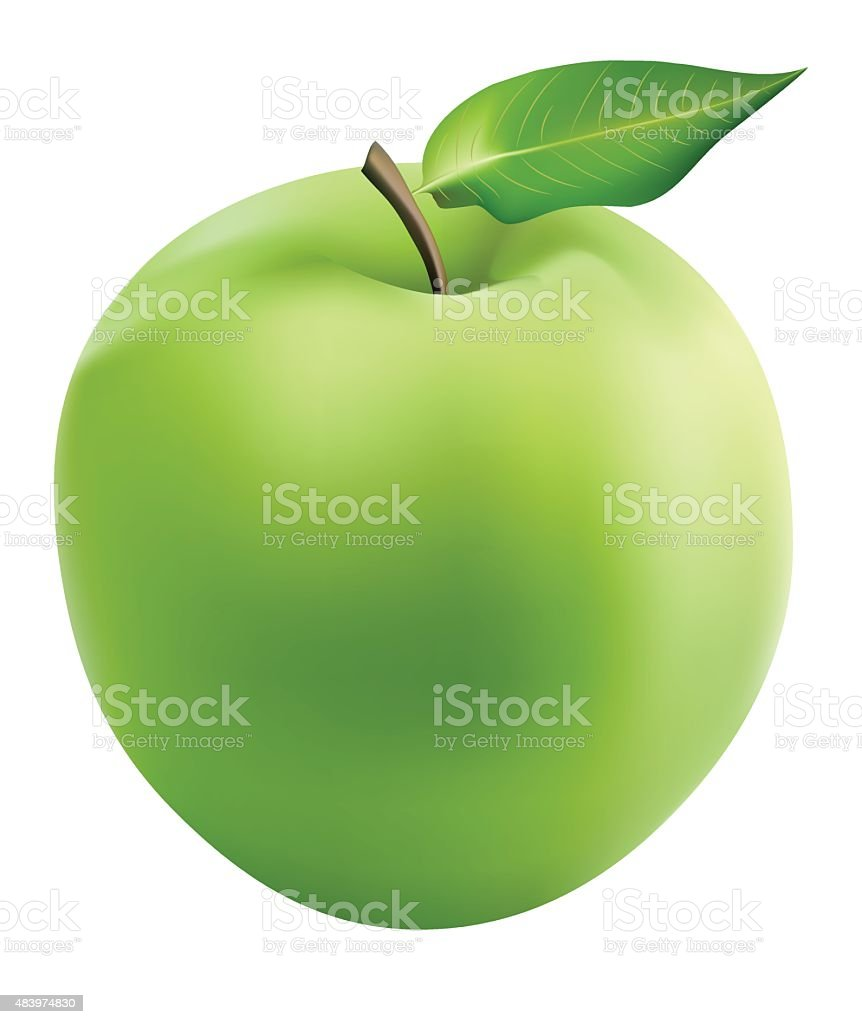 Fresh Granny Smith Apple - Illustration vector art illustration