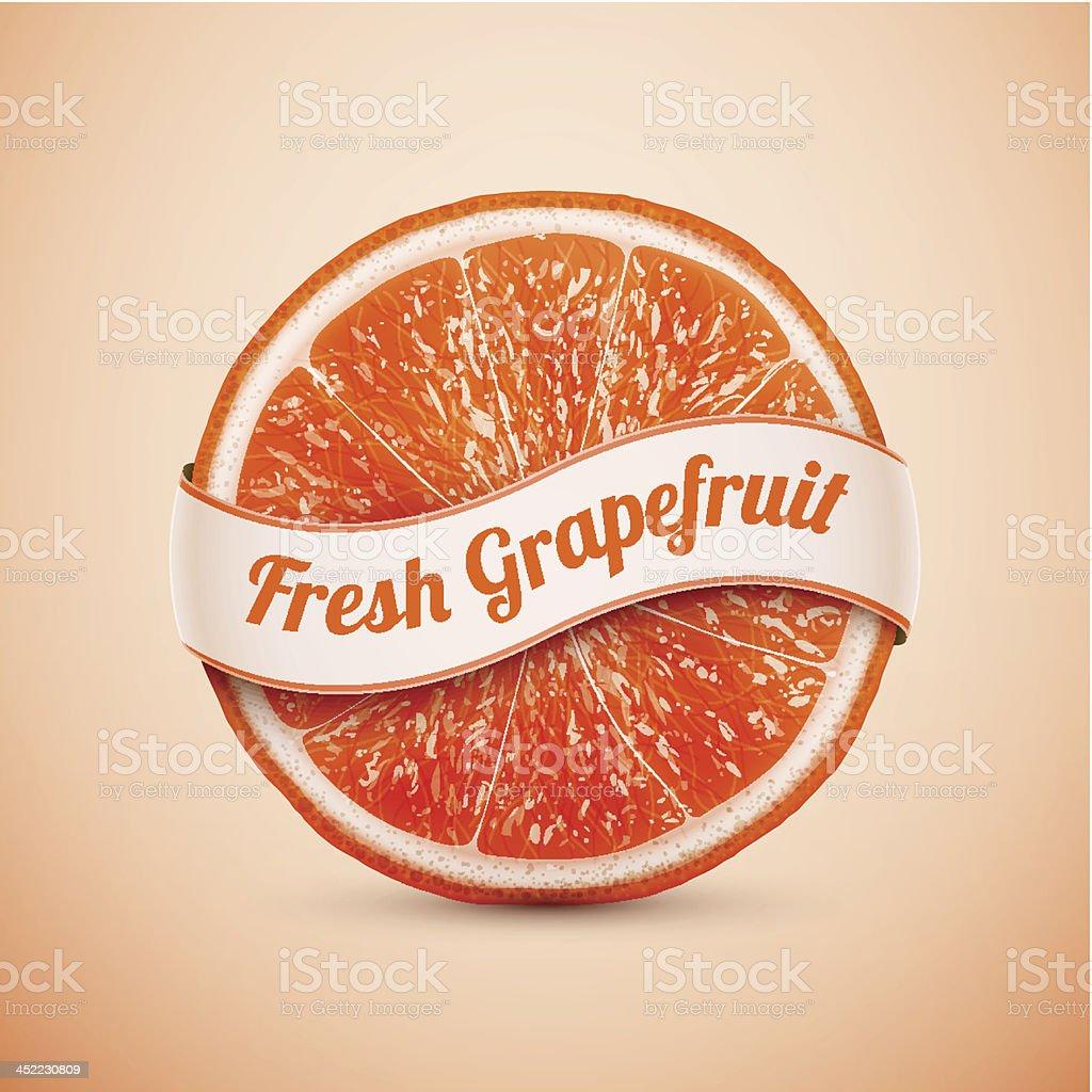 fresh grapefruit with ribbon royalty-free stock vector art