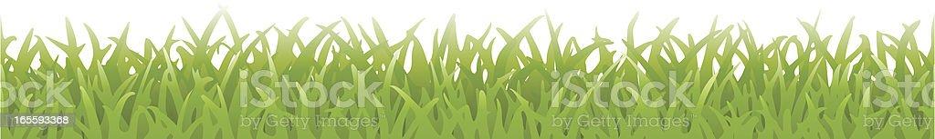 Fresh Grass (Seamless Vector) vector art illustration
