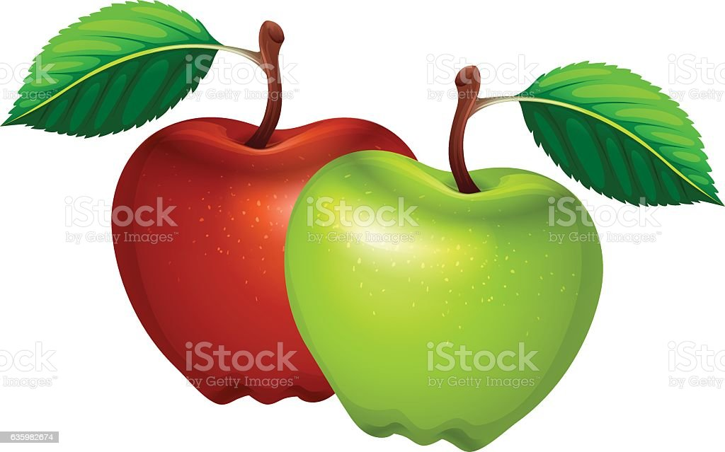 Fresh green and red apples vector art illustration
