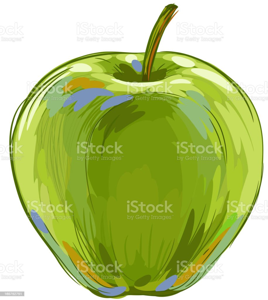 Fresh Green Apple Isolated on White vector art illustration