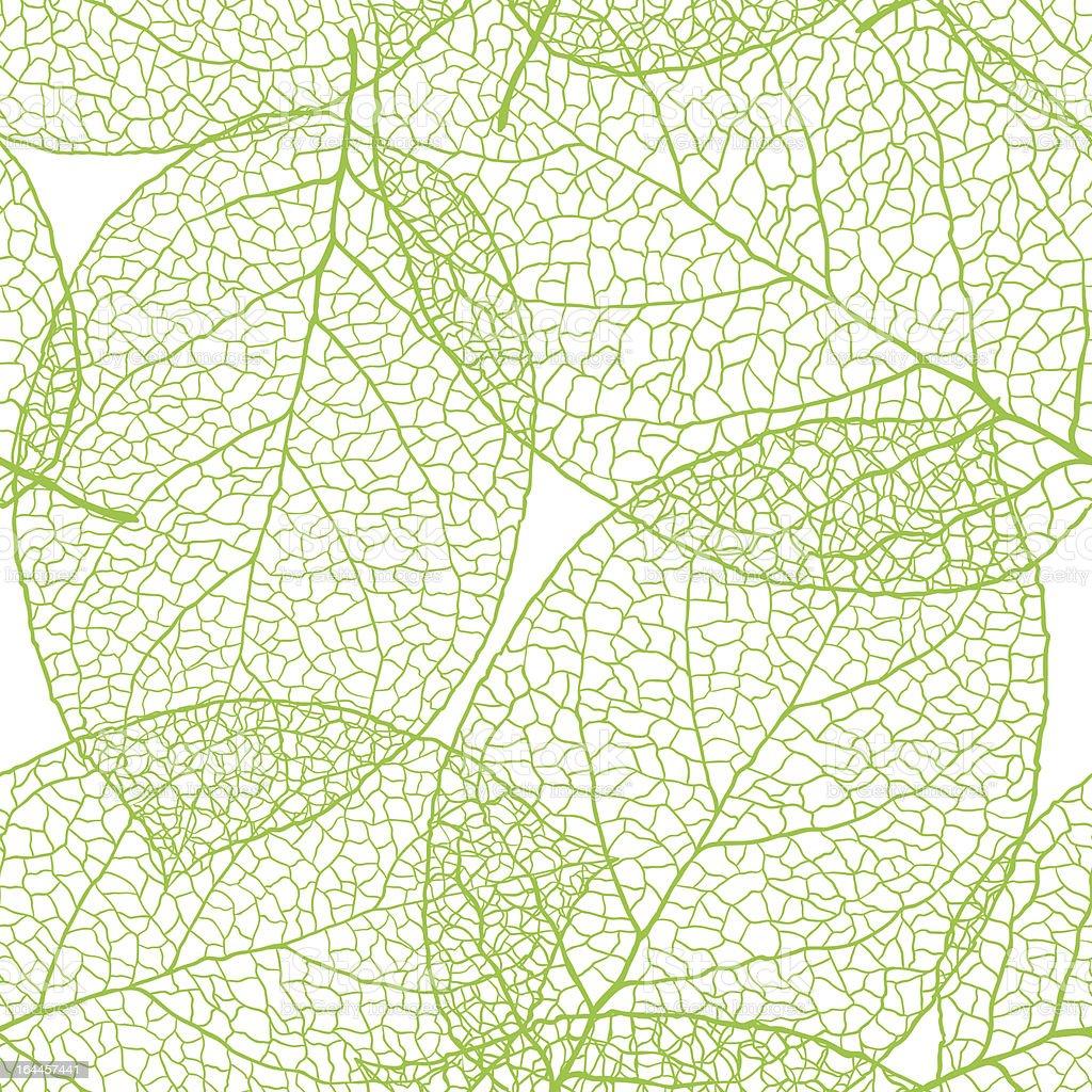 Fresh green leaves background - vector illustration royalty-free stock vector art
