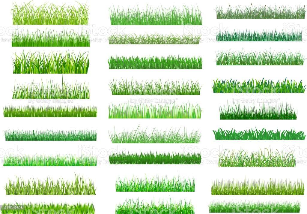 Fresh green spring grass borders vector art illustration