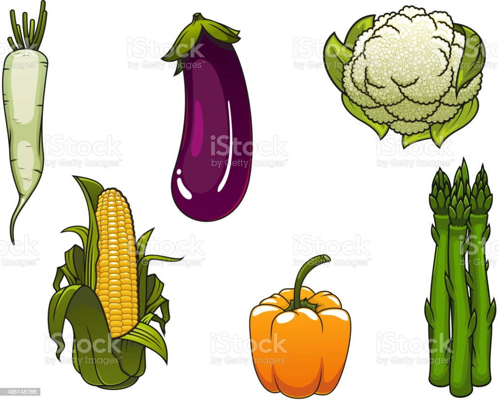 Fresh healthy isolated farm vegetables vector art illustration