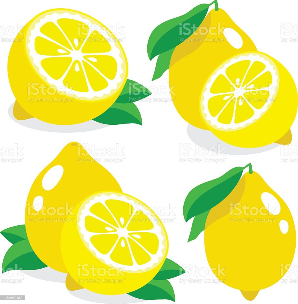 Fresh lemons, collection of vector illustrations vector art illustration