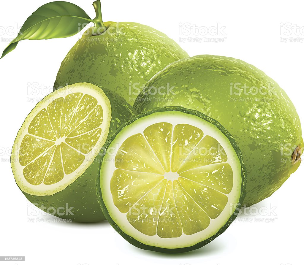 Fresh limes with leaves vector art illustration