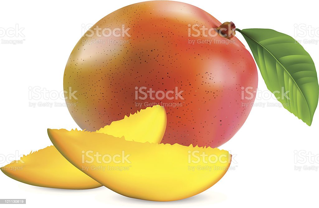 Fresh mango with leaves isolated on a white background vector art illustration