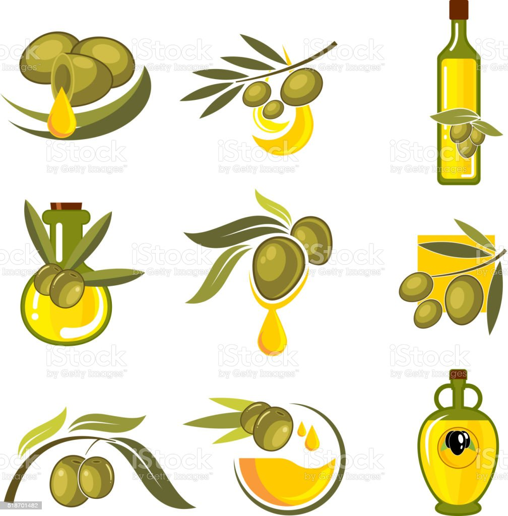 Fresh olive fruits and oil bottles symbols vector art illustration