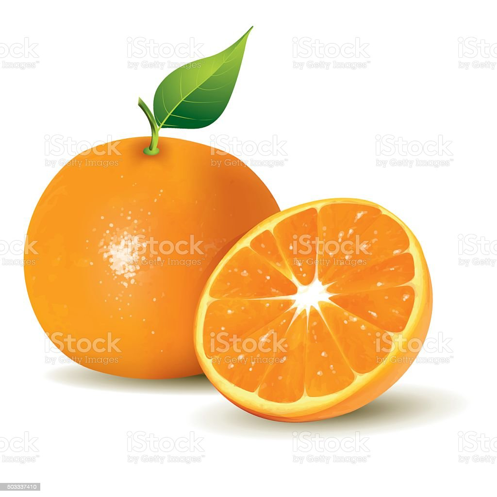Fresh Oranges, Whole and Half Sliced vector art illustration
