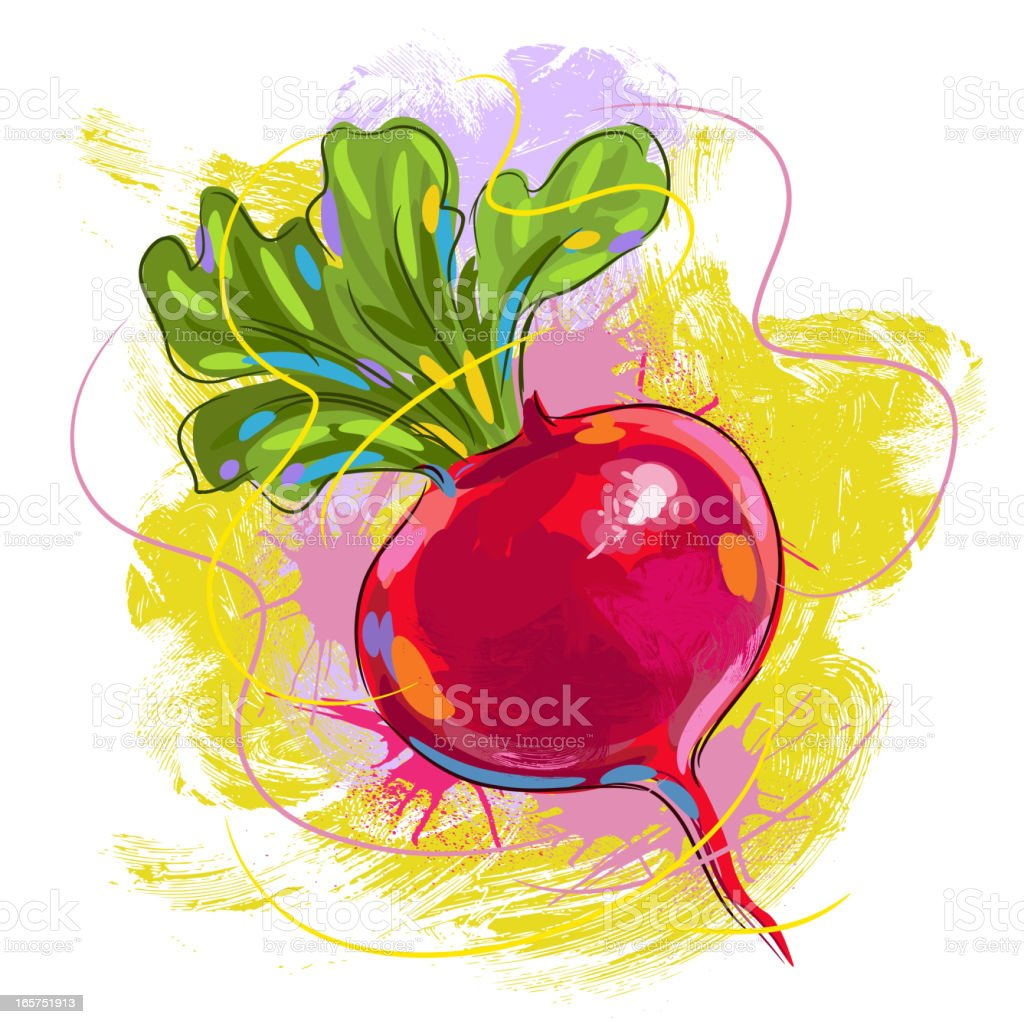 Fresh Red Radish royalty-free stock vector art