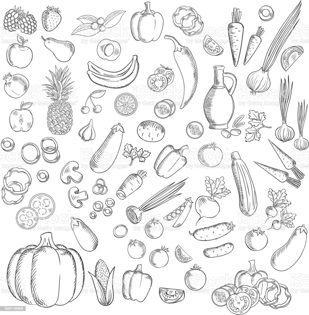 Fresh sketched fruits and vegetables icon vector art illustration