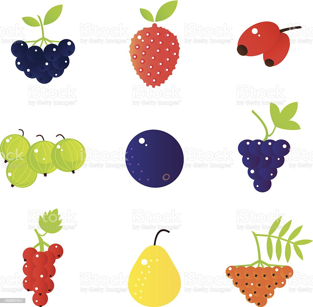 Fresh summer berries and exotic fruit set isolated on white royalty-free stock vector art