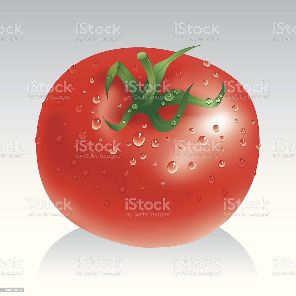 Fresh tomato royalty-free stock vector art