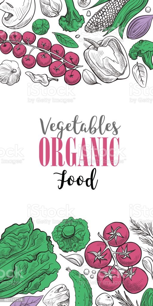 Fresh vegetables background with space for text vector art illustration
