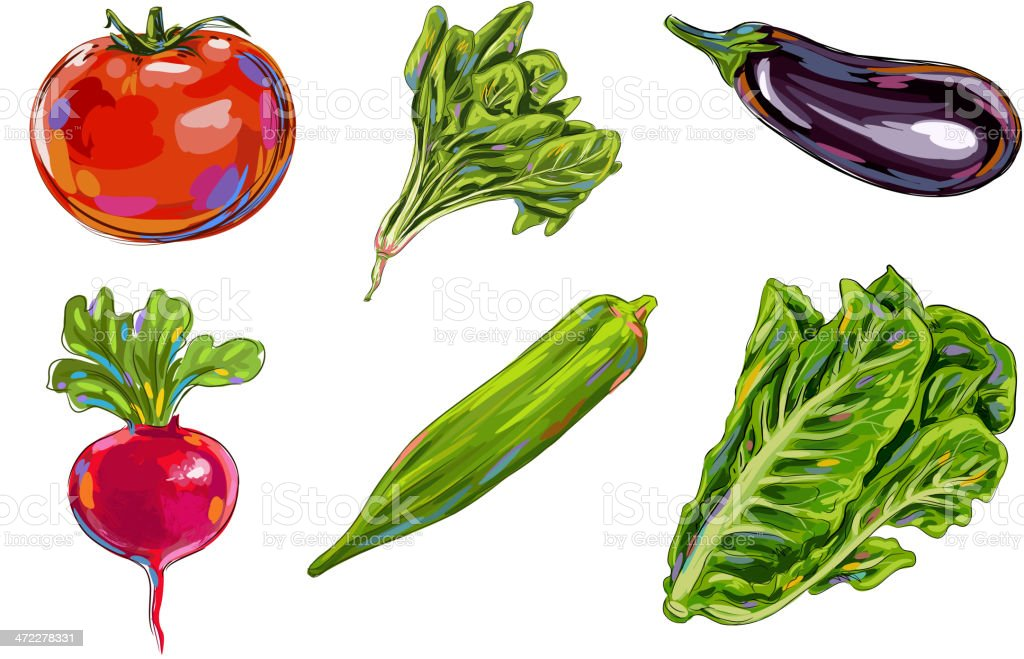 Fresh Vegetables royalty-free stock vector art