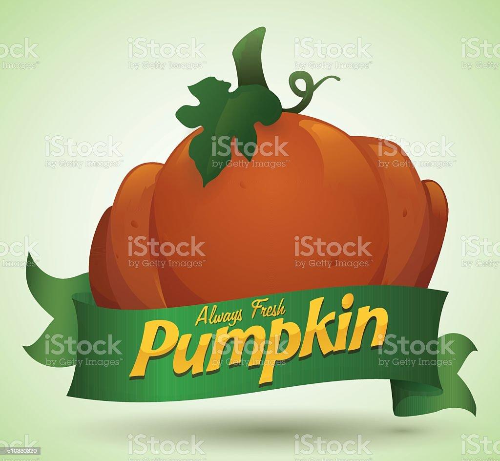 Freshly Pumpkin from the Farm with Green Ribbon vector art illustration