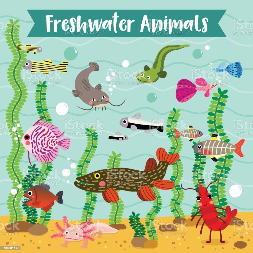 Freshwater Animals cartoon X-ray fish, Guppy, Piranha, Catfish,...