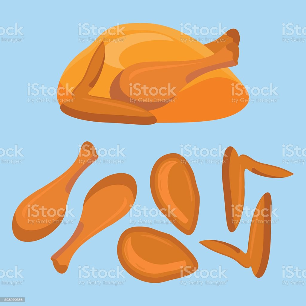 Fried chicken or turkey and its parts vector art illustration