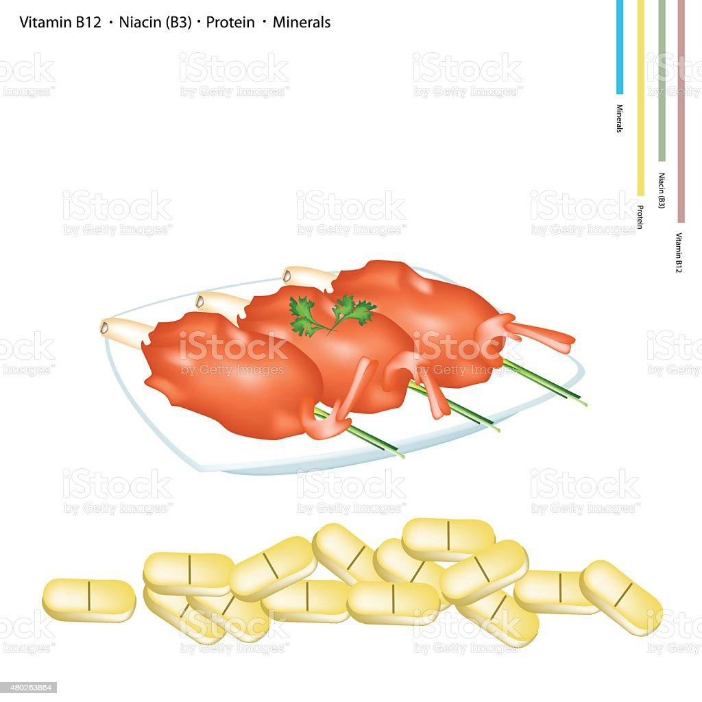 Fried Shrimp with Vitamin B12, B13 and Protein vector art illustration