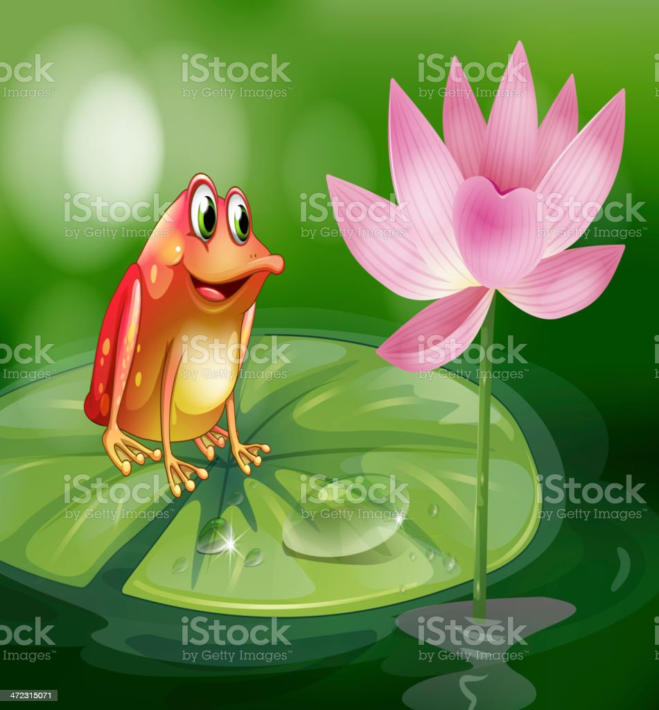 Frog above the waterlily beside a pink flower royalty-free stock vector art