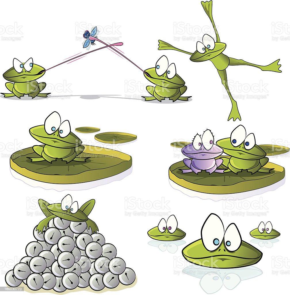 Frog Cartoon Collection vector art illustration