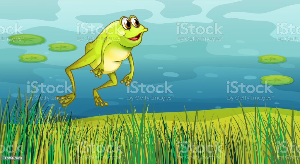 frog jumping in the grass royalty-free stock vector art