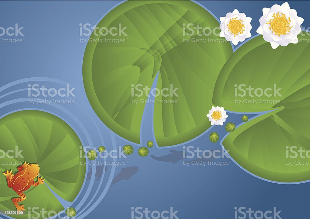 Frog Waterlilies and Pads vector art illustration