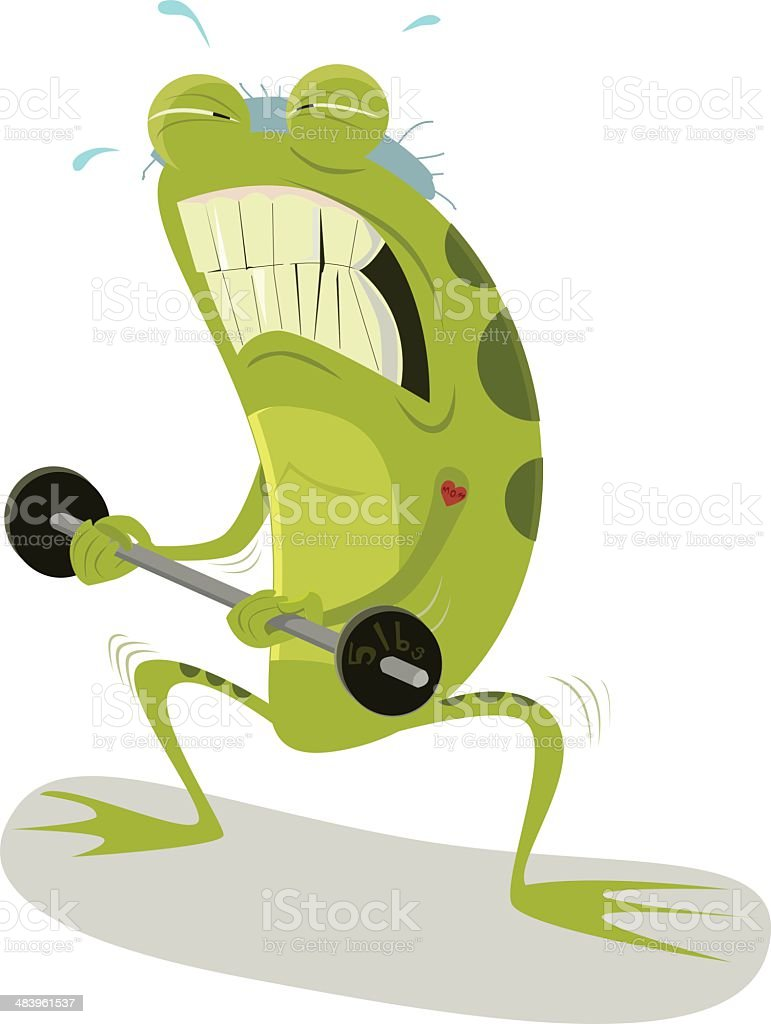 Frog Weightlifting royalty-free stock vector art