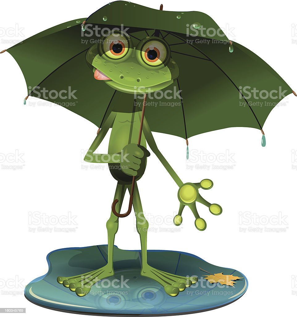 Frog with a green umbrella royalty-free stock vector art