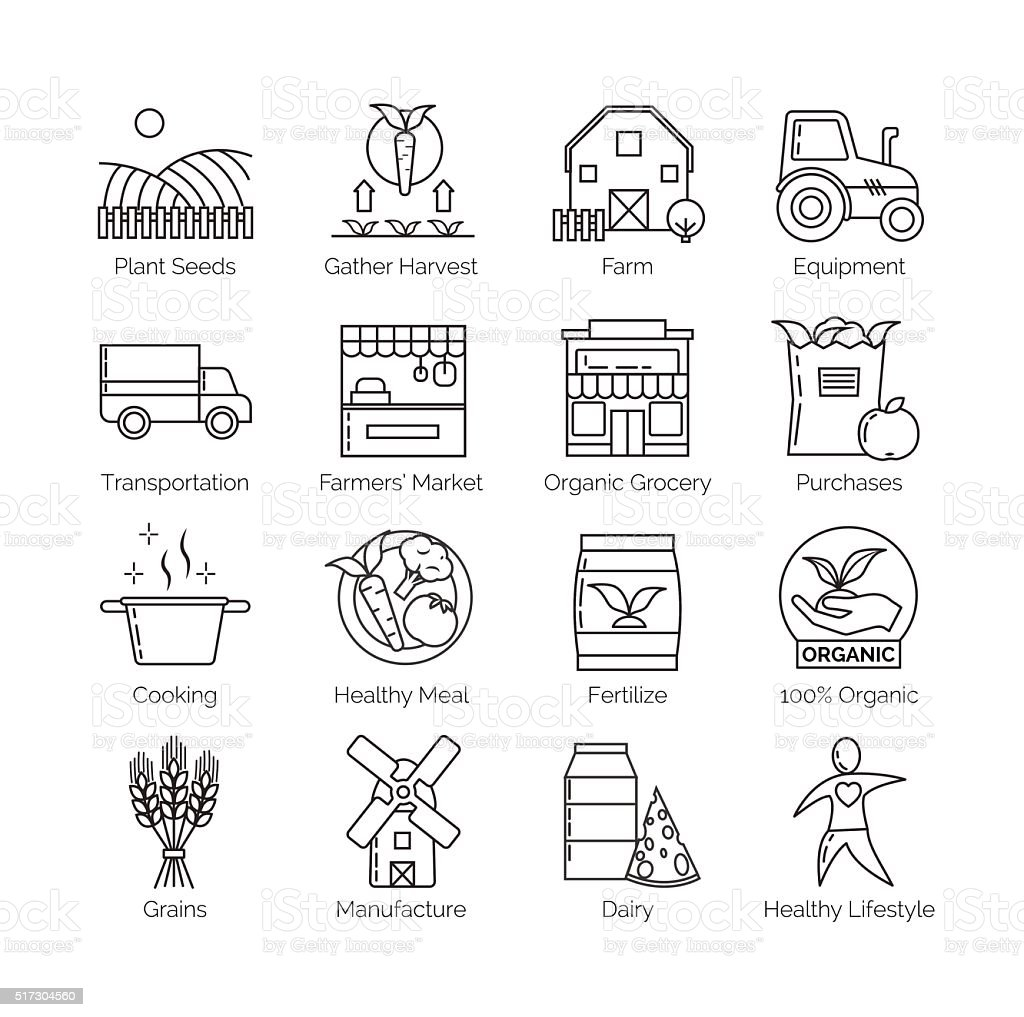 From farm to fork set of flat thin line vector vector art illustration