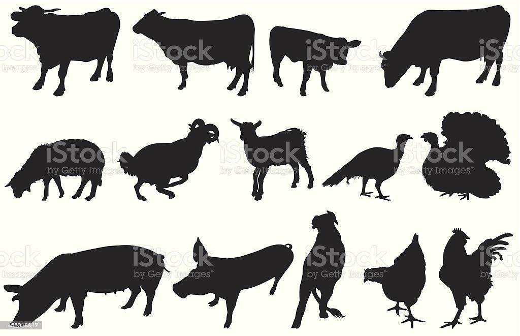 From farm royalty-free stock vector art