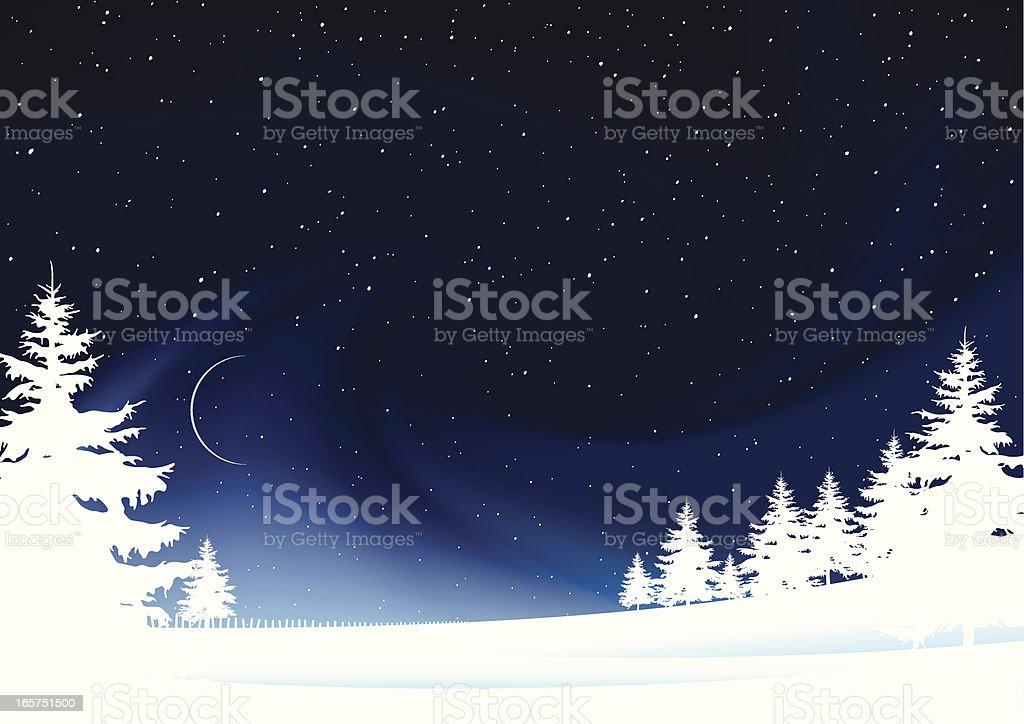 Frozen winter landscape stars snow and moon vector art illustration