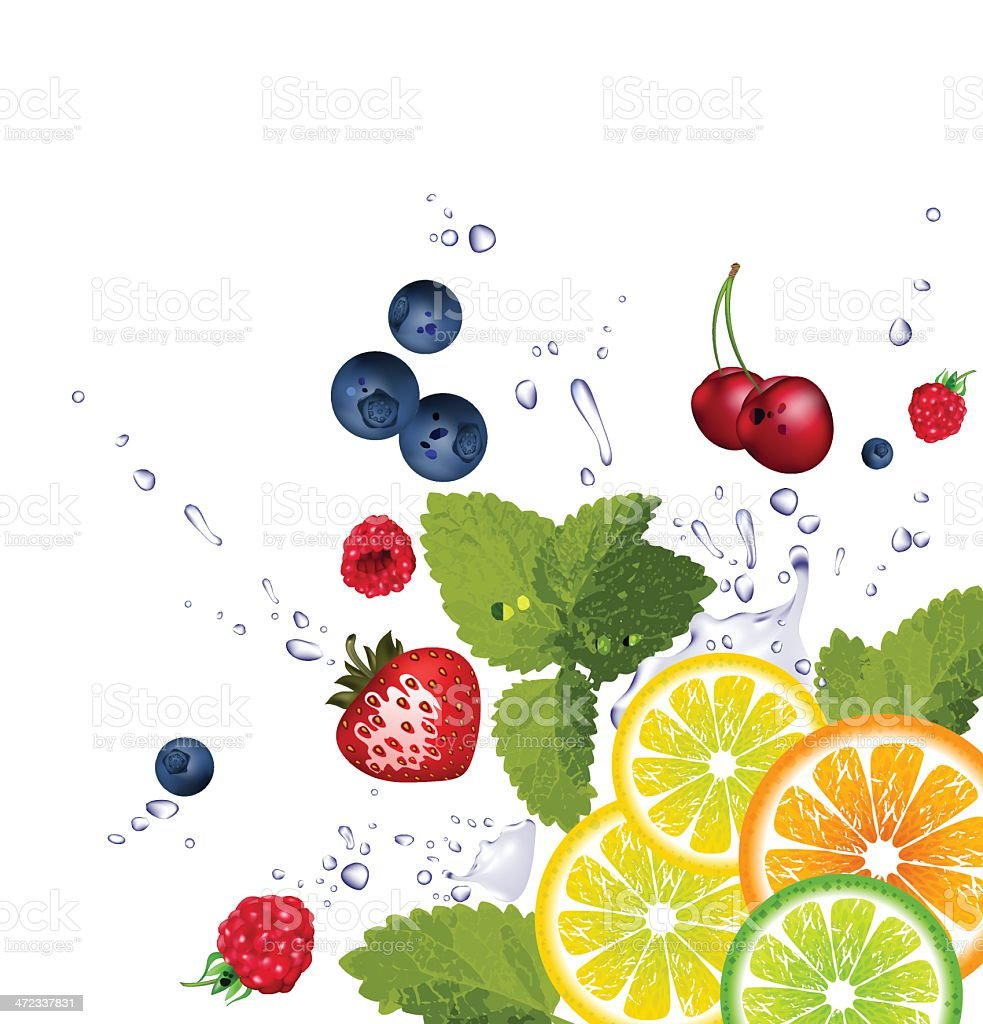 fruit and splash of water royalty-free stock vector art